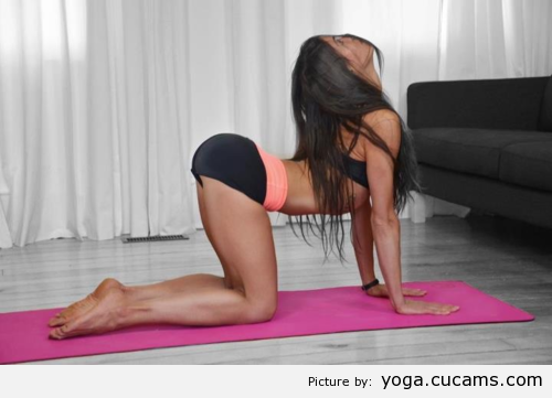 Yoga Lollipop Bush by yoga.cucams.com
